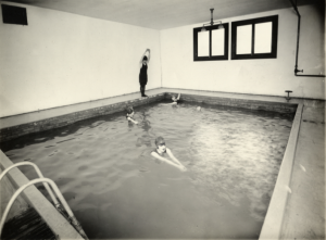 Five women, four in the water, and one prepared to dive, are swimming in an indoor pool.